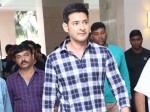 Superstar Mahesbabu Clarity On Bollywood Entry