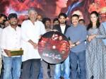 Antharvedam Movie Audio Released