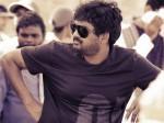 Director Puri Jagannadh Fans Counter Pawan Kalyan Fans