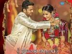 Srinivasa Kalyanam Movie Celebrity Review