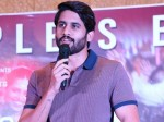 Shailaja Reddy Alludu Movie Success Meet