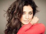 Is Tabu Re Entry Into Tollywood With Mega Star Chiranjeevi Movie