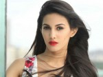 Bollywood Beauty Amyra Dastur Sensational Comments On South Indian Hero