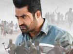 Aravinda Sametha Collections Ntr Enters Elite Club