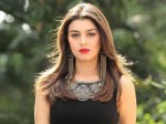 Hansika Crazy Fan Shows His Love 28 Languages
