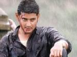 Interesting News About Mahesh Babu Sukumar Movie