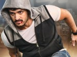 Akhil S Mr Majnu Movie 3 Days Box Office Collections Report