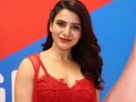 Samantha Akkineni Sharwanand Star 96 Telugu Remake