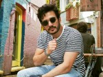 Akhil Akkineni S Fourth Film Confirmed With Bommarillu Bhaskar Geerha Arts Production