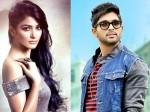 Crazy Beauty Pooja Hegde Romance With Allu Arjun Once Again