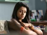 Ar Murugadoss Scripts Trisha Krishnan S Woman Centric Thriller