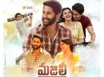Majili Collected 30 Cr Distributor Share In 11 Days