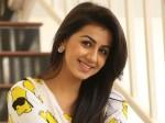 Heroine Nikki Galrani Responds On Link Up Rumours With Cinematographer