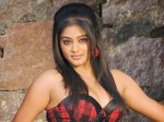 Priyamani To Play Key Role In Rana Daggubati S Virataparvam Movie