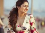 Sayyeshaa Busy With Puneeth Rajkumar Movie After Honeymoon