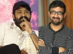 Director Teja Comment About Junior Ntr