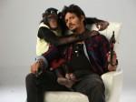 Rangam Fame Jeeva S Gorilla Will Release On June 21st