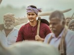 Maharshi 13 Days Colections Report