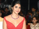 Pooja Hegde Special Look In Maharshi Success Celebrations