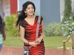 Illegal Post On Poonam Kaur And Lakshmi Parvathi Traced
