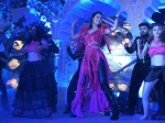 Katrina Kaif Perform At The Rs 200 Crore Wedding