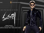 Maharshi Overseas Collection Final Report