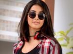 Pooja Hegde S Semi Hot Photo Goes Viral On Social Media