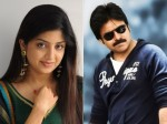 Poonam Kaur And Pawan Kalyan Affair Issue To Be Closed