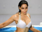 Bipasha Basu Special Treet With Old Bikini Look
