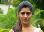 Gayathri Gupta Senstional Comments On Bigg Boss Telugu