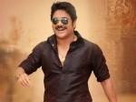 Akkineni Nagarjuna S Birthday Plannings By Fans