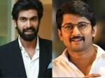 Rana Daggubati Producing For Jersey Remake