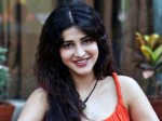 Shruti Haasan Never Care The Negative Comments