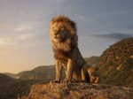 The Lion King Collects A Whopping Rs 54 75 Cr In 3 Days