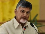 Tollywood Producer Sensational Comments On Chandrababu