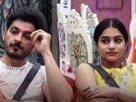 Bigg Boss Telugu Season 3 Punarnavi Bhupalam Ali Raja In Secret Room