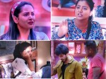 Bigg Boss Telugu 37 Day Highlights Himaja Warns Rahul Simpl