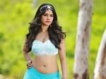 Ismart Shankar S Heroine Nabha Natesh Got Kollywood Chance