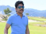 Nagarjuna Congratulates The National Film Awards Winners