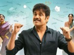 Manmadhudu 2 Movie 3 Days Nizam And Usa Collections