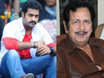 Only Junior Ntr Has The Ability To Save The Telugu Desam Party Giribabu