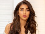 Pooja Hegde S Special Photo Shoot Hilighted Her Glamour