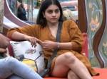Bigg Boss 3 Telugu Netizens Trolls Punarnavi Who Scolds Ravi Krishna