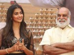 Kovelamudi Raghavendra Rao Comment On Pooja Hegde In Valmiki Function