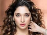 Tamannaah Role In Gopichand S New Movie