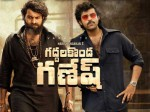 Valmiki Movie Worldwide Closing Collections