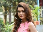 Payal Rajput While Shooting In Papikondalu Faced Problems