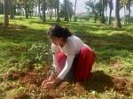 Sai Pallavi Takes Green India Challenge And Nominates Samantha Ranadaggubati