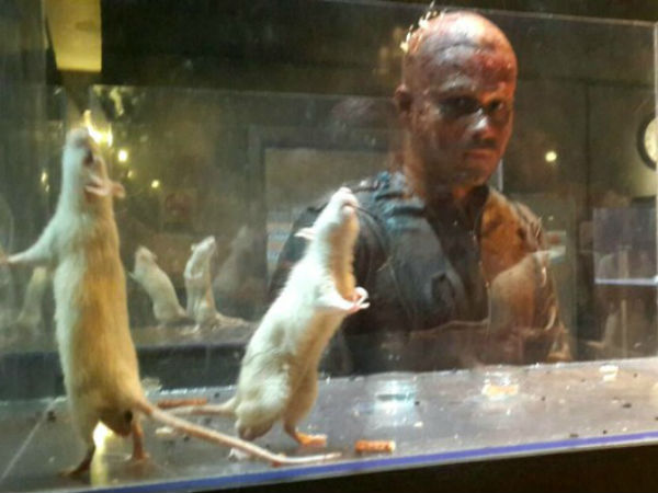 Emraan Hashmi's new look from Mr X