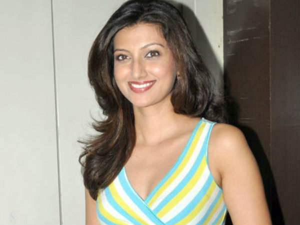 Hamsa Nandini met with an accident